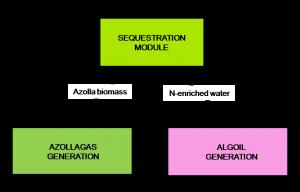 biofuel module